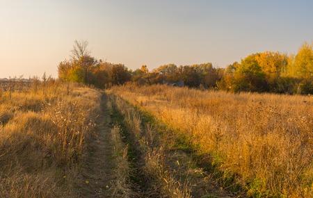 earth road: Earth road to abandoned hamlet in Sumskaya oblast, Ukraine Archivio Fotografico