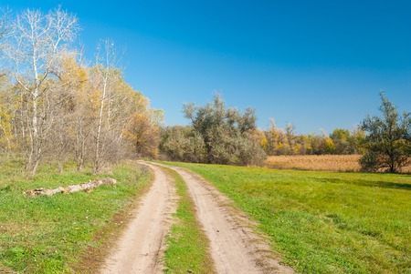 rushy: Fall landscape in central Ukraine near Dnepropetrovsk city