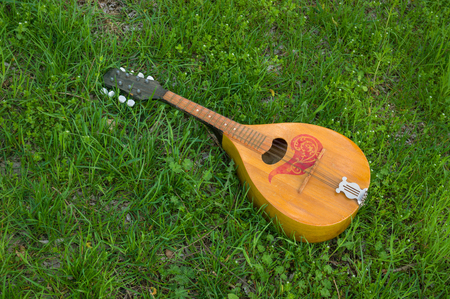 doubled: Needless mandolin lost in spring grass Stock Photo
