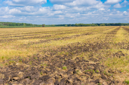tillage: Agricultural land with primary tillage (cultivation) prepared to new season in central Ukraine
