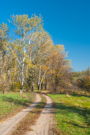 earth road: Rural landscape with earth road at sunny autumnal day in central Ukraine Stock Photo