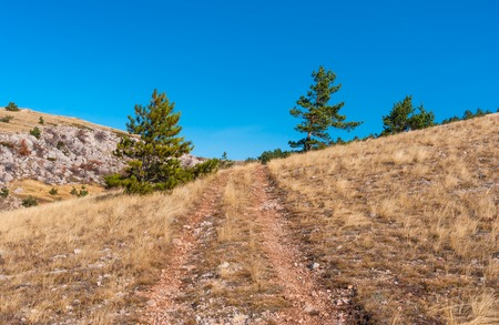 earth road: Landscape with earth road on Babuhan Yaila natural reserve in Crimean peninsula