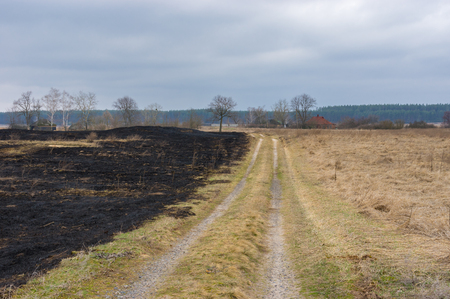 earth road: Spring landscape with earth road and burnt grass in Mala Rublivka village, central Ukraine Stock Photo