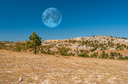 desolate: Desolate mountain landscape on a uninhabited planet