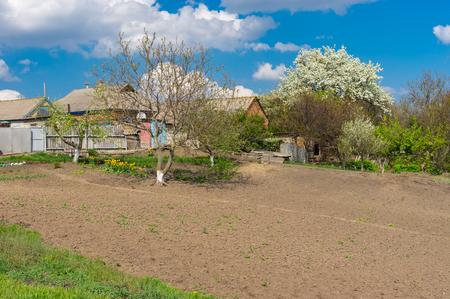 garden settlement: Landscape with spring gardens in Seleshchina village, Ukraine