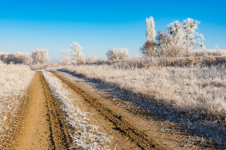 earth road: Winter landscape with earth road
