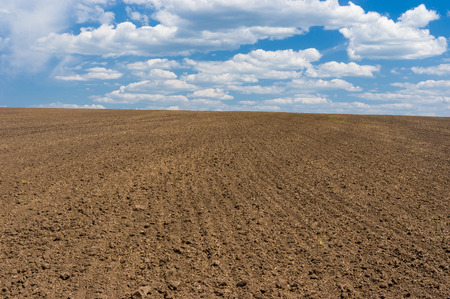 Ukrainian agricultural simplicity - pure land and sky