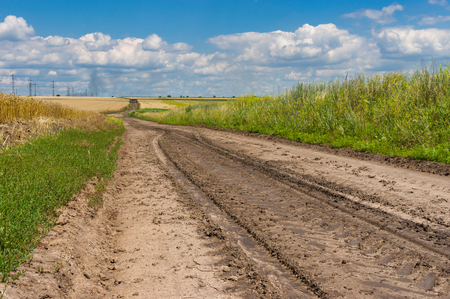 earth road: Earth road with dried trace between agricultural fields in Ukraine at summer season. Stock Photo