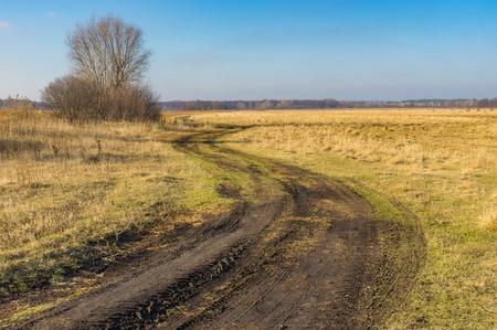 meadowland: Classic landscape with meandering earth road on a meadow-land at fall season in Poltavskaya oblast, Ukraine Stock Photo