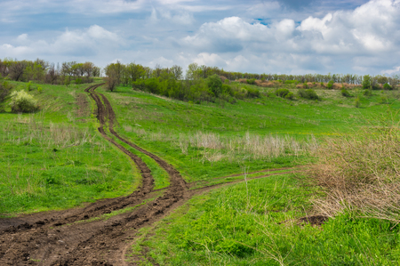 forked: Forked country road at spring season, central  Ukraine Stock Photo