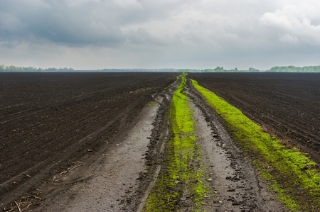 plough land: Classic Ukrainian agricultural landscape at spring season