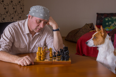 rival: Mature man hard looking on his canine rival in a chess family tournament