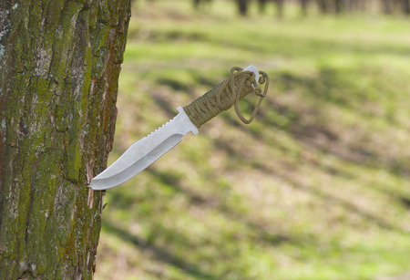 selfmade: Self-made knife plunged into tree trunk