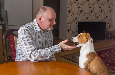ludicrous: Mature man having conversation with basenji dog sitting at the table