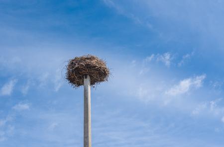 White stork nest on a pillar