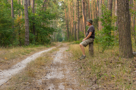 earth road: Lonely hiker sitting on a stub at earth road in evening mixed forest Stock Photo