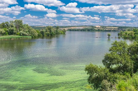 dnepr: Summer landscape with Dnepr river covered with cyanobacterias near Dnepropetrovsk city, Ukraine