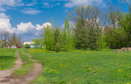 farmstead: Sunny spring landscape with earth road leading to remote farm-stead in central Ukraine