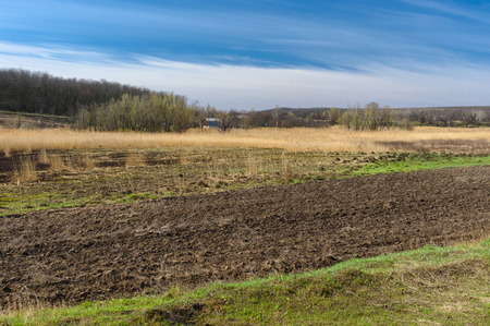 rushy: Early spring landscape with flood-lands in Ukraine