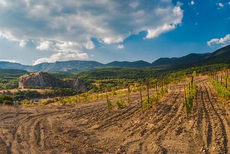 rockclimber: Landscape in Crimean mountains near small village of Krasnokamianka - a place for rock-climbers gathering