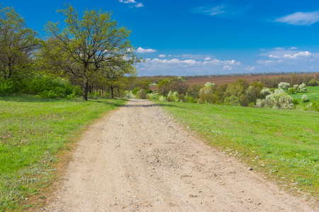 rural area: Spring landscape with macadamized road in rural area, central Ukraine