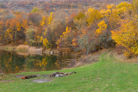 annexed: Autumnal landscape on the lakeside in wild forest