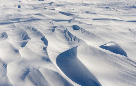fantastical: Shapes, light and shadows of fresh snow