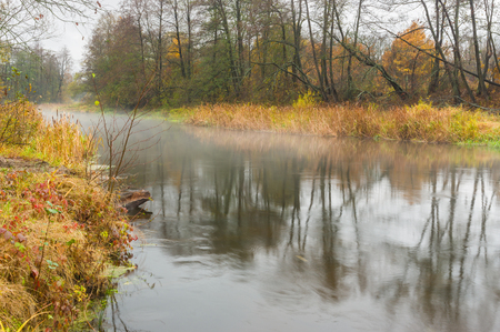 rushy: Autumnal mist over Vorskla river in Ukraine