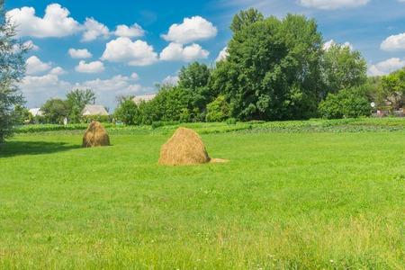 campesino: paisaje de junio con casas campesinas cerca de prado en el centro de Ucrania