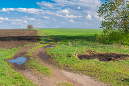 earth road: Classic landscape with earth road leading to agricultural fields at spring season in Poltavskaya oblast, Ukraine