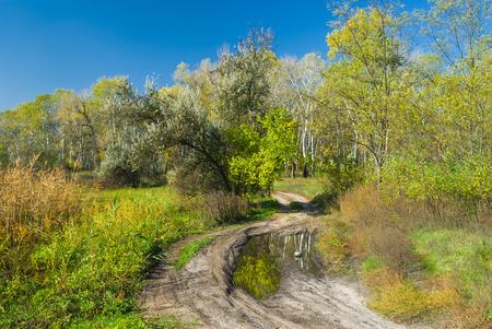 rushy: Autumnal landscape in central Ukraine near Dnepropetrovsk city.