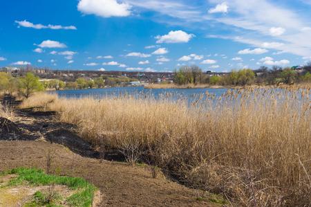 rushy: Riverside of small Ukrainian river Sura at early spring season