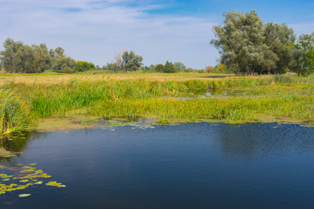 Late summer landscape on a small river Merla in central Ukraine