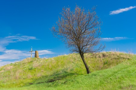 Landscape with ancient burial mound with cross and lonely apricot tree at early spring season