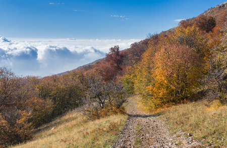 arises: View from Babuhan Yaila natural reserve down to Black Sea in autumnal season when fog arises from the sea and goes to mountains when sun warms water.