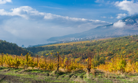 Black Sea landscape at fall season - fog arises from the sea and goes to mountains when sun warms water.