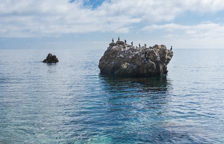 pacification: Black Sea wild water-scape with cormorants. Stock Photo