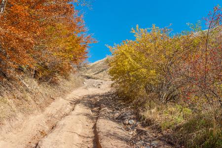 earth road: Landscape with rough earth road to mountain Demerdzhi, Crimean peninsula