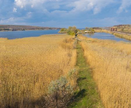 rushy: Autumnal landscape with path in rush field near Dnepr river at fall season, Ukraine Stock Photo