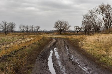 earth road: Ukrainian rural dirty earth road in rainy autumnal season Stock Photo
