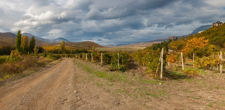 earth road: Panoramic mountain landscape with earth road between vineyards near Alushta city at fall season, Crimean peninsula