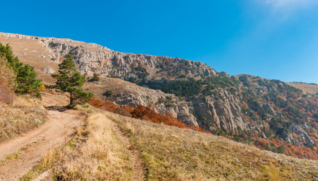 earth road: Panoramic landscape with earth road and hiking track on mountain pasture Demerdzhi, Crimean peninsula