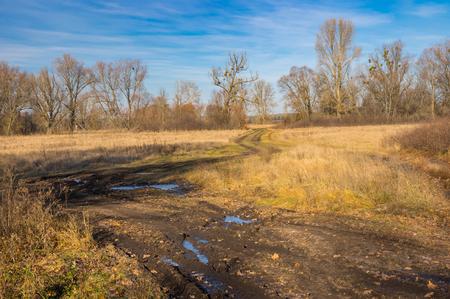 Autumnal landscape with an dirty road through water meadow in  Poltavskaya oblast, Ukraine