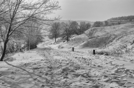 earth road: Black and white landscape with earth road down at winter morning in central Ukraine