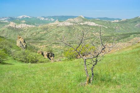 Spring in Karadag nature reserve, Crimea, Ukraine. Stock Photo