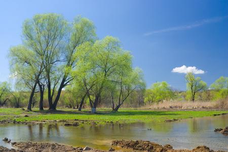 Ukrainian rural landscape in spring season.