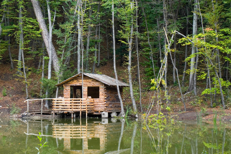 Tourist shelter in a forest. Stock Photo