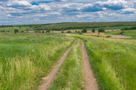 Earth road through fresh summer meadow near Dnipro city in central Ukraine Zdjęcie Seryjne
