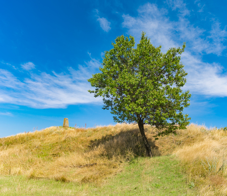 Landscape with ancient burial mound and lonely apricot tree at late summer season Stock Photo
