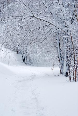 겨울 이야기 풍경